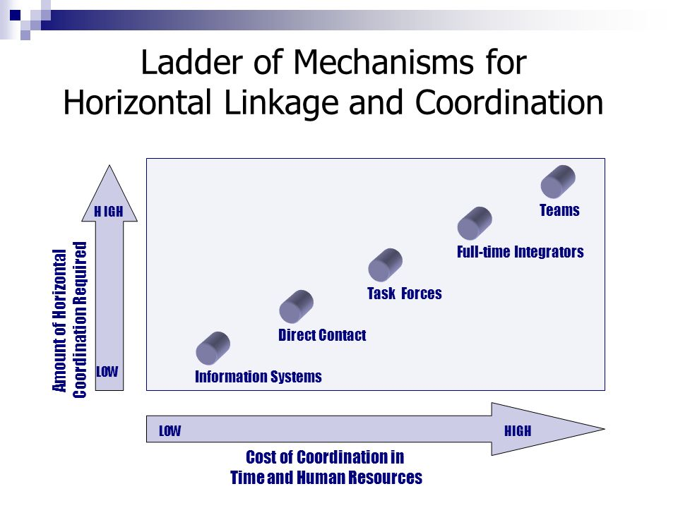 organisational structures and vertical information linkages management essay Organisational structure  and are able to communicate without vertical structure thus making employees more confident in management and decreasing the .