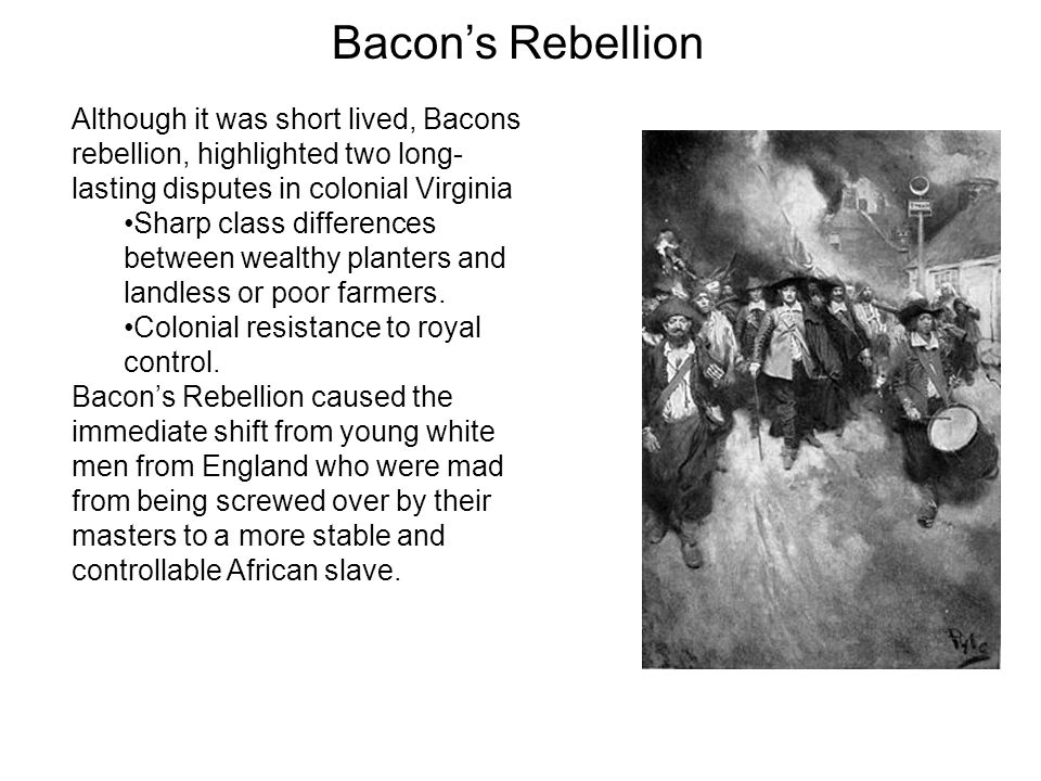 an analysis of the bacons rebellion Conclusion of language analysis essay paid to write essays better fahrenheit 451 essay on hope fire and ice poem interpretation related post of bacons rebellion essay.