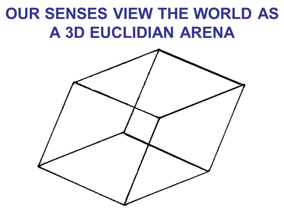 OUR SENSES VIEW THE WORLD AS A 3D EUCLIDIAN ARENA