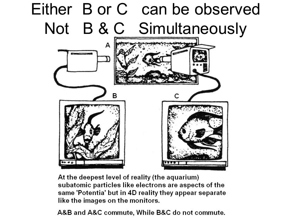 Either B or C can be observed Not B & C Simultaneously