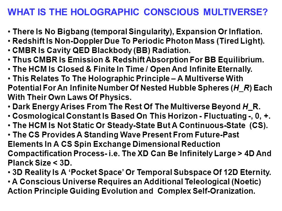 WHAT IS THE HOLOGRAPHIC CONSCIOUS MULTIVERSE