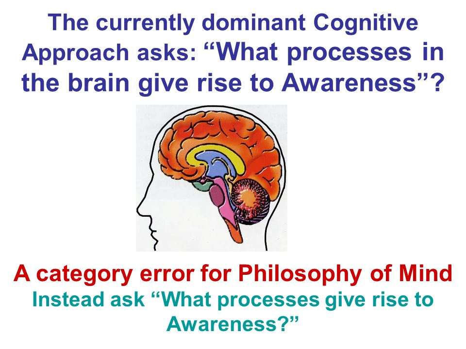 The currently dominant Cognitive Approach asks: What processes in the brain give rise to Awareness
