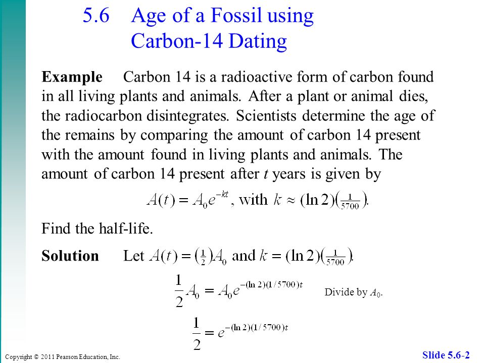 Fossil A Find How Can The Carbon Use Age You To Hookup Of
