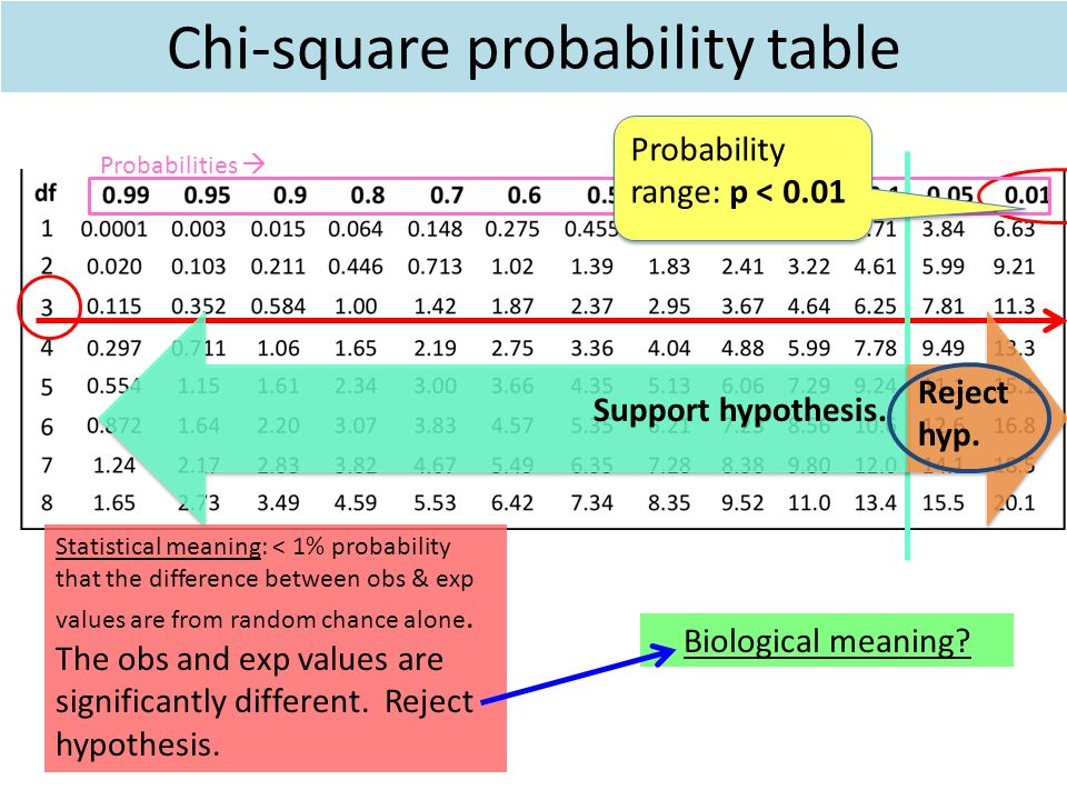 Chi square table download choice image table decoration ideas the chi square goodness of fit test ppt video online download 21 chi square probability table watchthetrailerfo