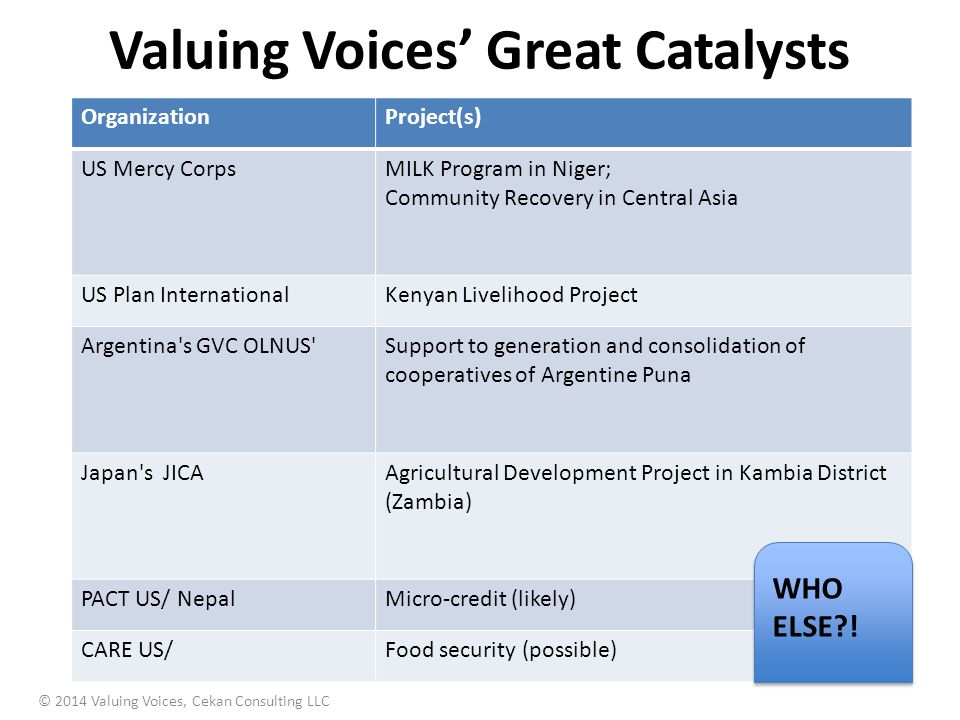 Valuing Voices' Great Catalysts