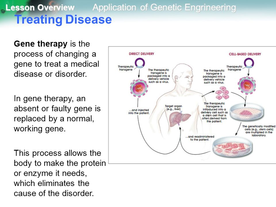 treating genetic diseases essay These are conditions that are different individual illnesses, with differing features,  treatment, complications and prognoses they are similar in.