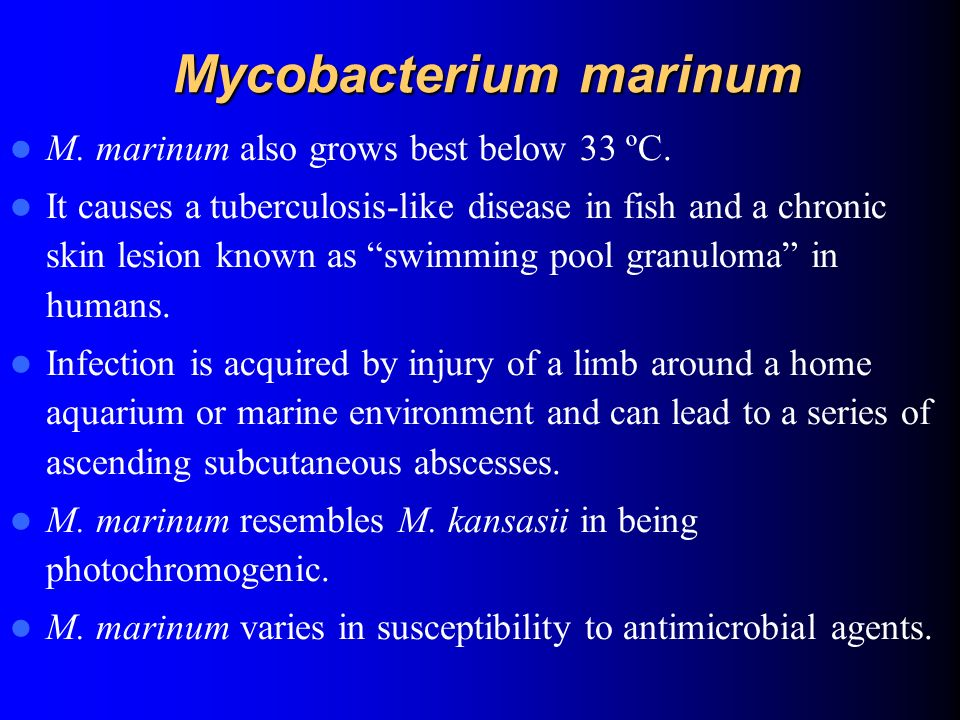 The Genus Mycobacterium Ppt Video Online Download