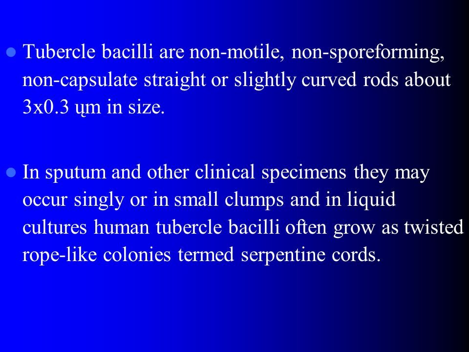 Tubercle bacilli are non-motile, non-sporeforming, non-capsulate straight or slightly curved rods about 3x0.3 ųm in size.