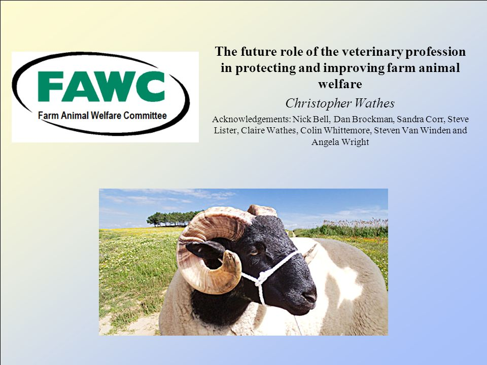 Veterinary Development Council