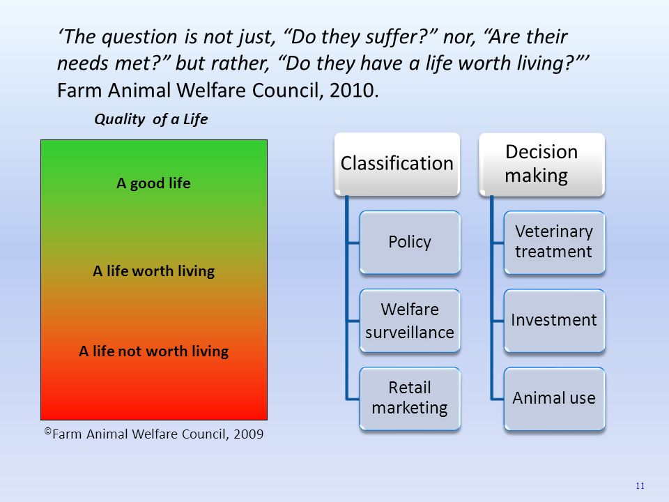 ©Farm Animal Welfare Council, 2009