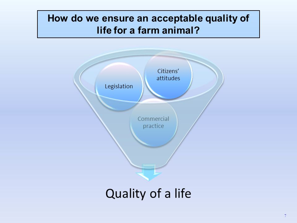 How do we ensure an acceptable quality of life for a farm animal