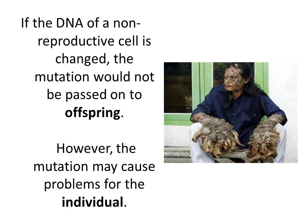 If the DNA of a non-reproductive cell is changed, the mutation would not be passed on to offspring.