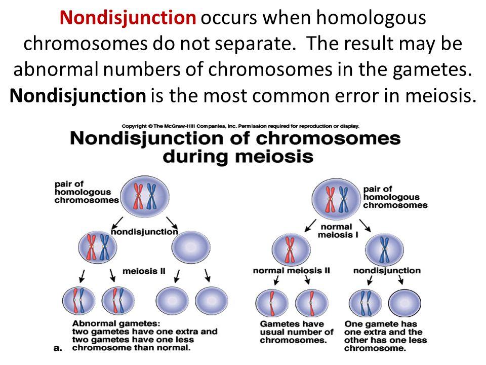 Nondisjunction occurs when homologous chromosomes do not separate