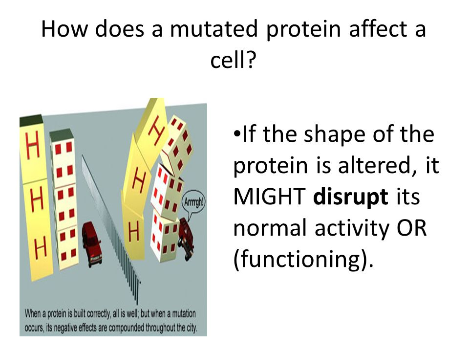 How does a mutated protein affect a cell