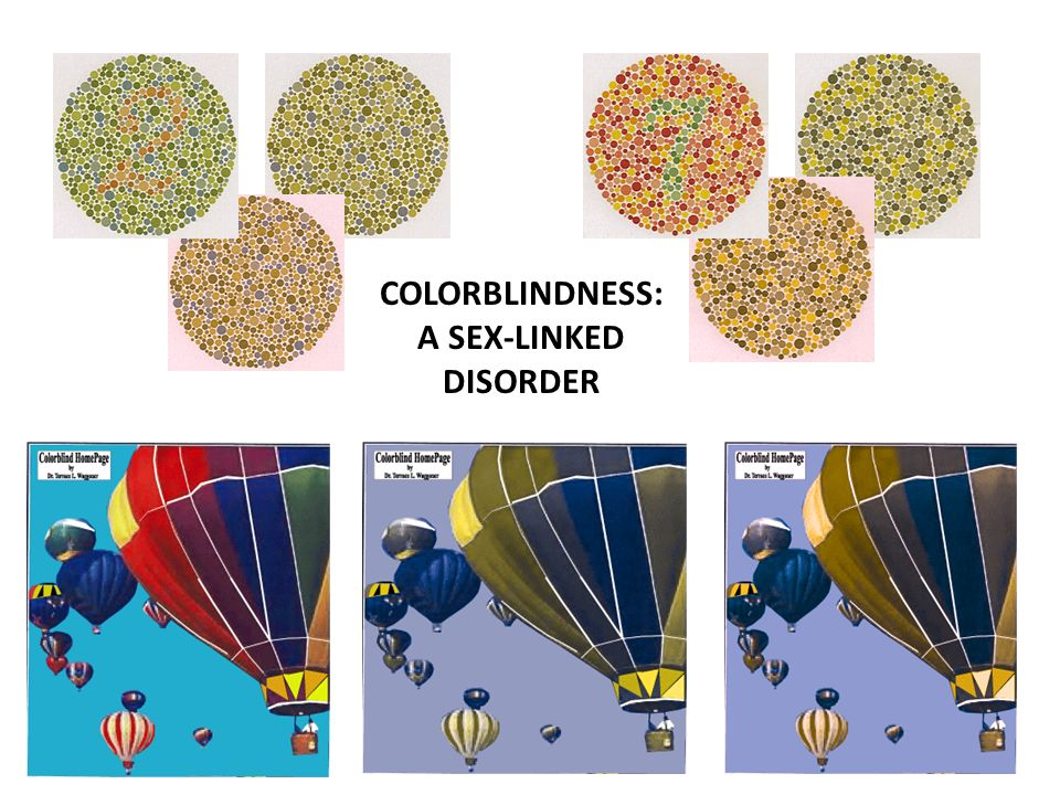 COLORBLINDNESS: A SEX-LINKED DISORDER