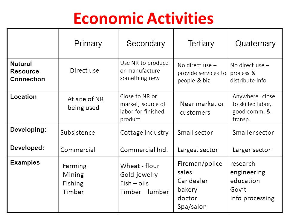 government economic systems ppt