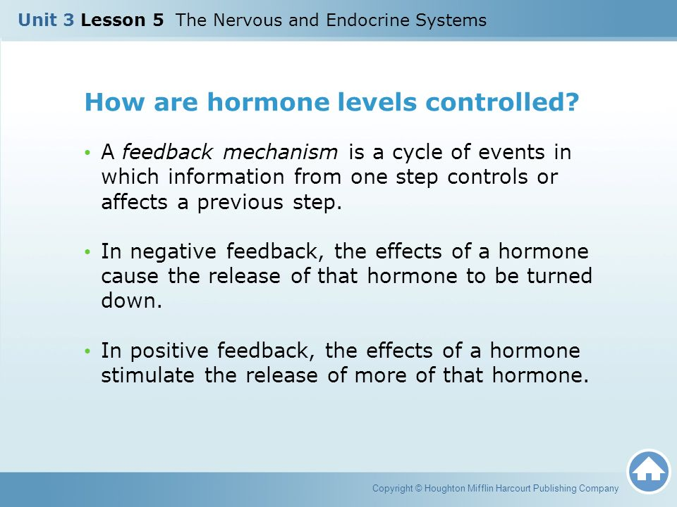 How are hormone levels controlled