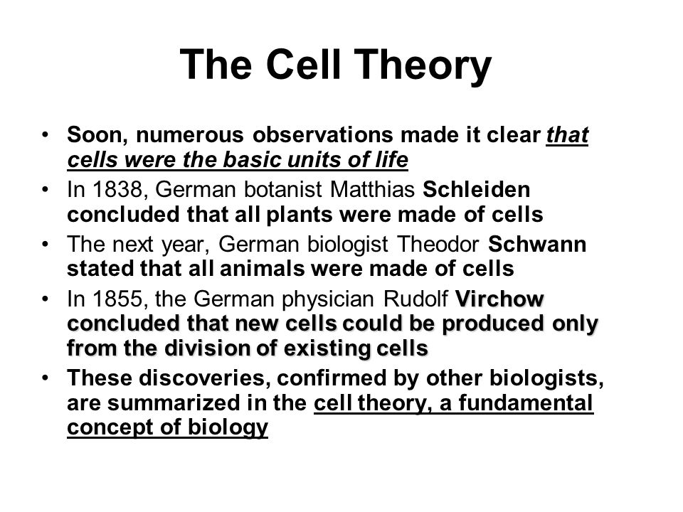Cell Structure and Function - ppt download