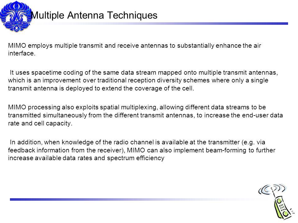 Multiple Antenna Techniques