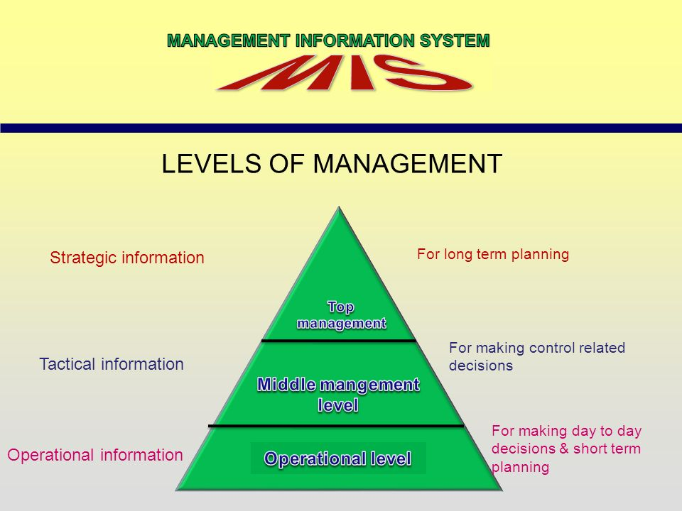 level of management information system Earn a management information systems degree at wayland while gaining  business skills and learning to navigate technology-based career fields.