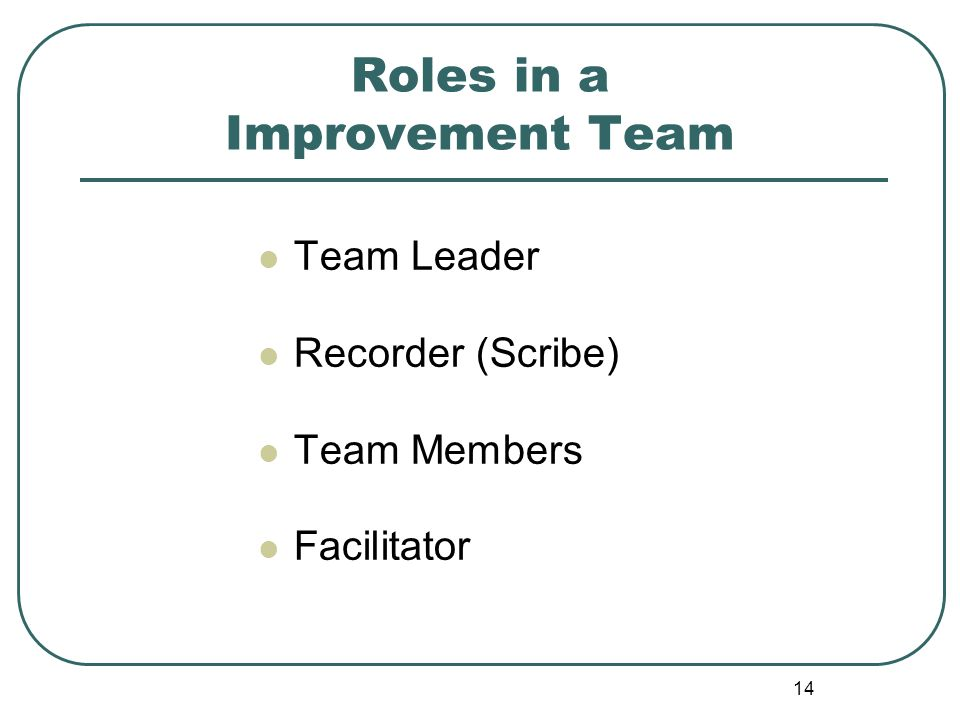 Roles in a Improvement Team