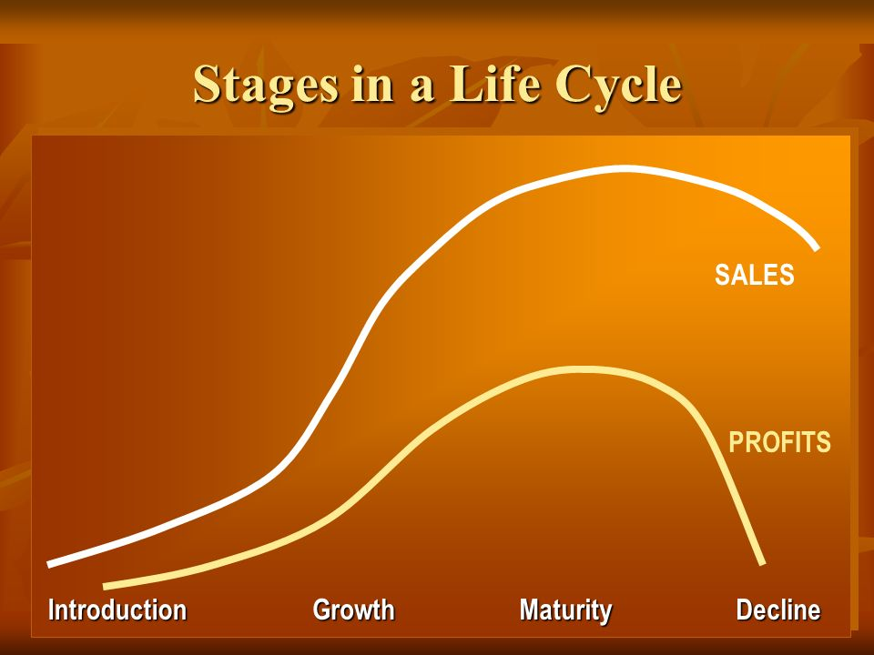 Stages in a Life Cycle Introduction Growth Maturity Decline SALES