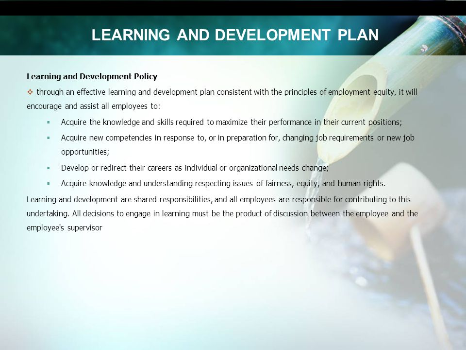 learning development plan Would they benefit from additional training, mentoring or a stretch assignment some of your employees may already have development goals in mind, but don't know how to get started or if the company will support those plans other employees may not realize you see potential in them or need encouragement to reach for.
