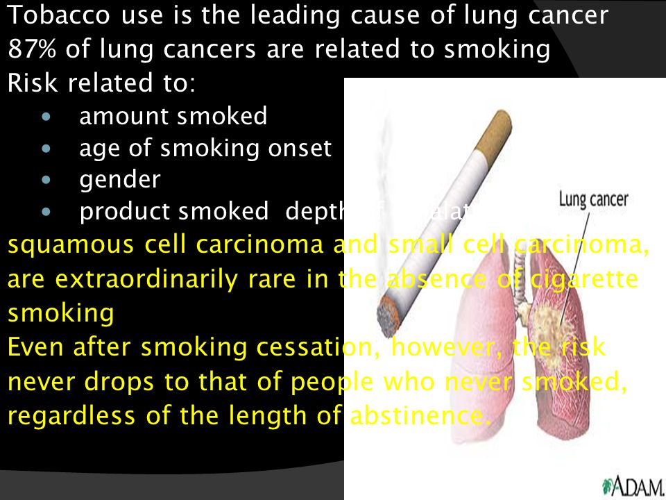 tobacco use and lung cancer Home » publications » drugfacts » cigarettes and other tobacco products cigarettes and other tobacco products revised january 2018 what is tobacco smoking can lead to lung cancer, chronic bronchitis, and emphysema it increases the risk of heart disease.