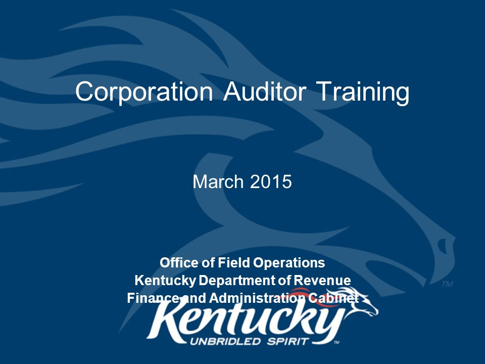 Corporation Auditor Training - ppt download