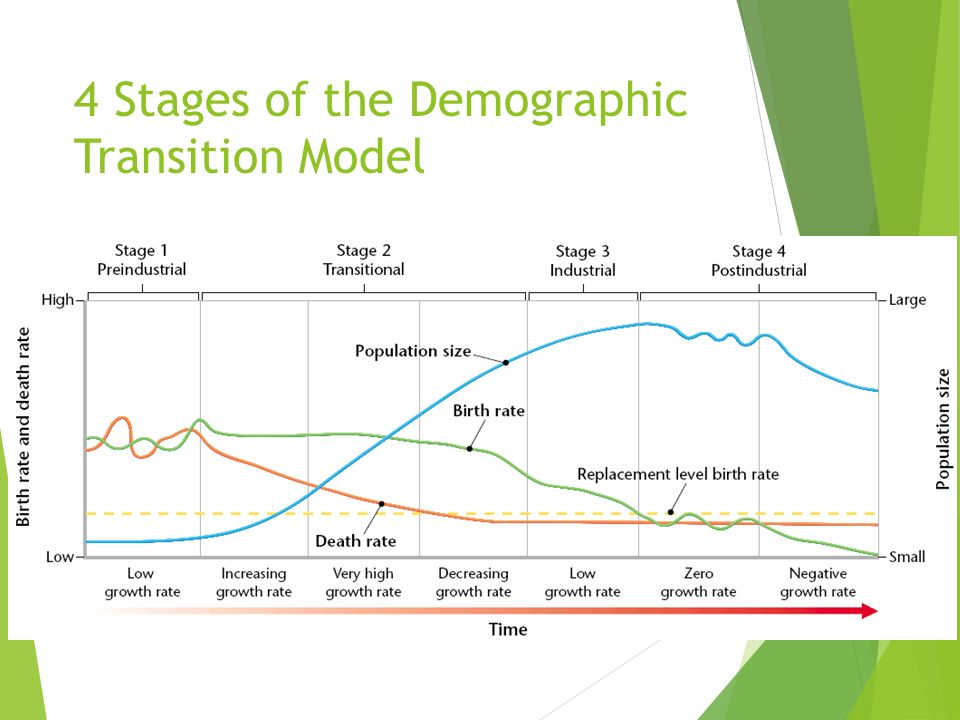 4 Stages of the Demographic Transition Model