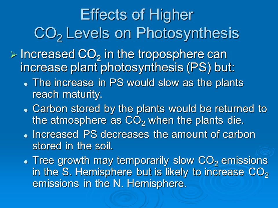 Effects of Higher CO2 Levels on Photosynthesis