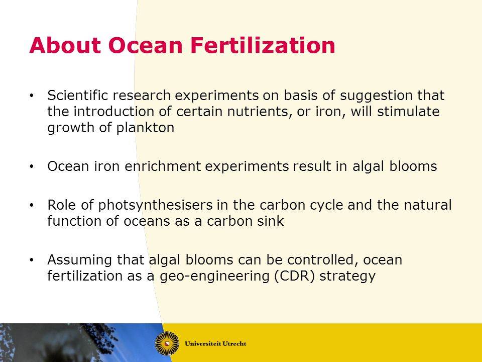About Ocean Fertilization