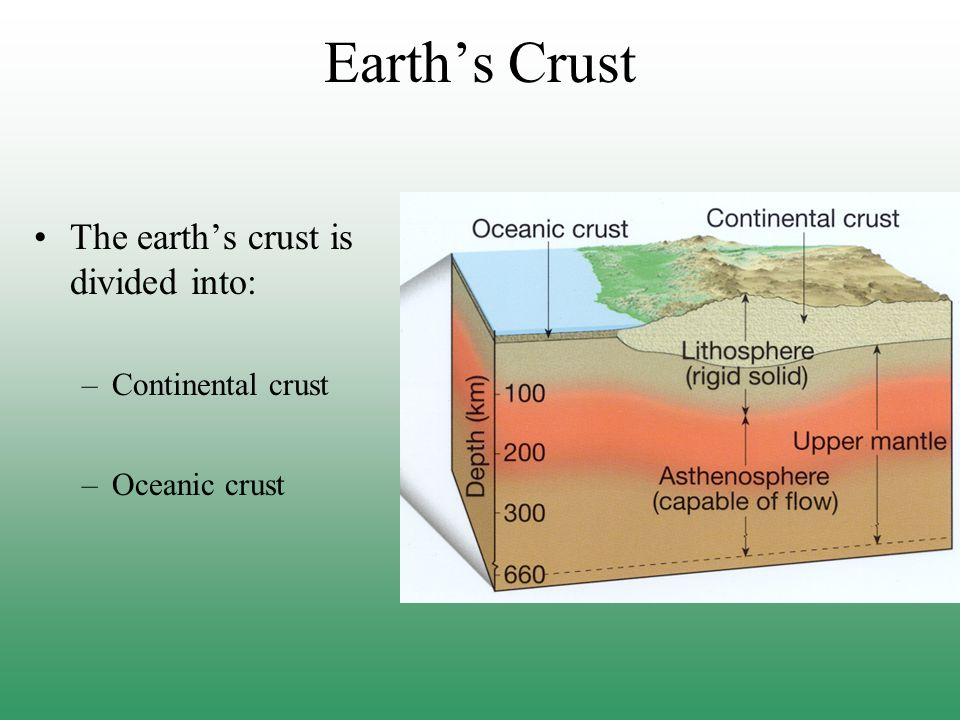 Earth's Crust The earth's crust is divided into: Continental crust