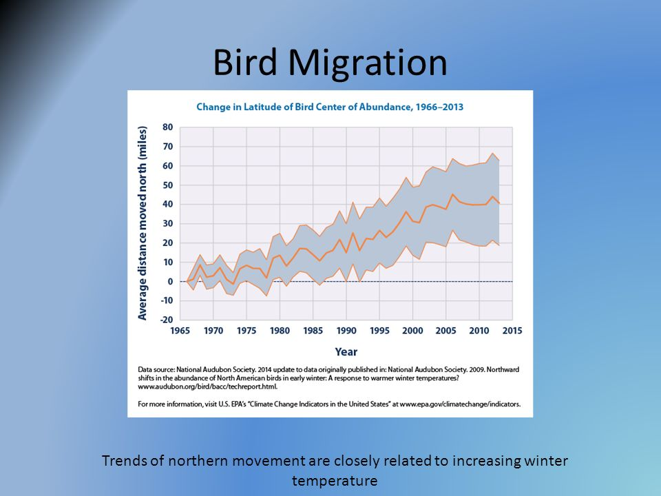 Bird Migration Trends of northern movement are closely related to increasing winter temperature