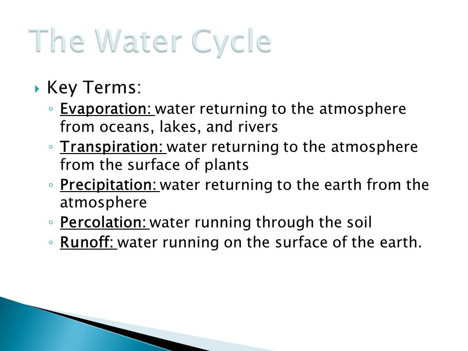 The Water Cycle Key Terms: