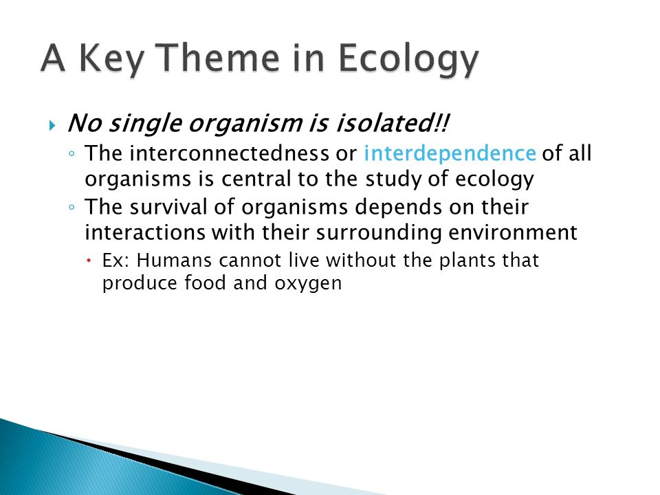A Key Theme in Ecology No single organism is isolated!!