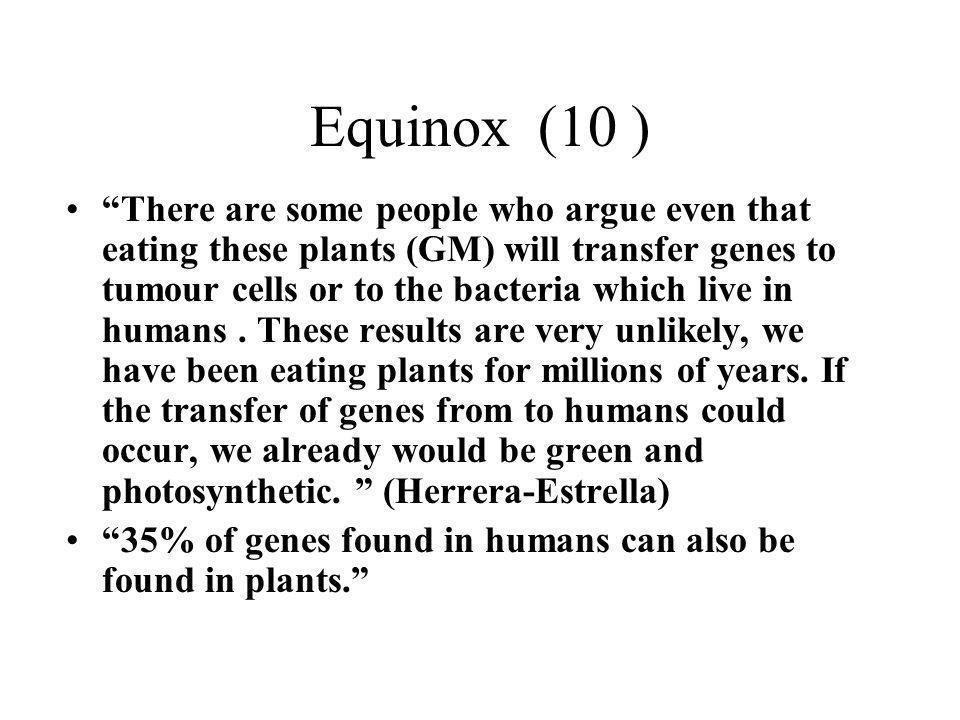 Equinox (10 )