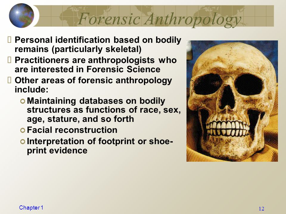 an analysis of the different functions of anthropology Linguistic anthropology is mainly concerned with the technical analysis of language anthropology - the study of humanity divisions are physical anthropology, archaeology, ethnology, and anthropological linguistics.