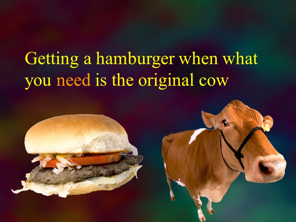 Getting a hamburger when what