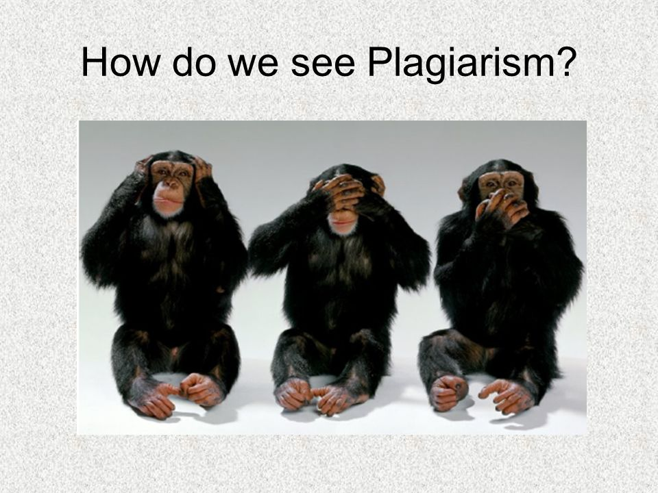 Do Colleges Check Essay Plagiarism