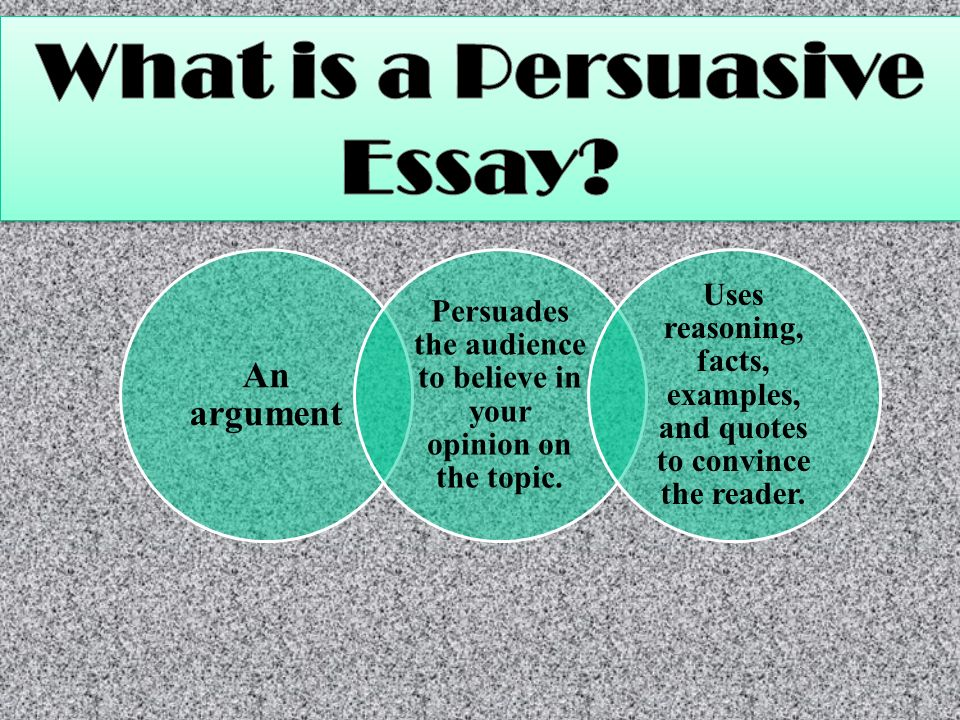 what every students needs to know before during writing ppt  what is a persuasive essay