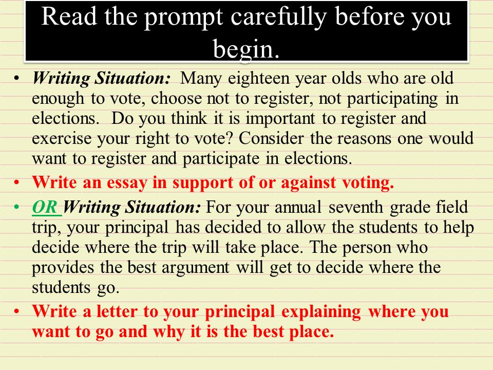 Who has the right to vote essay