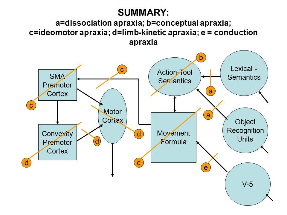 Apraxia & Autism | Study.com