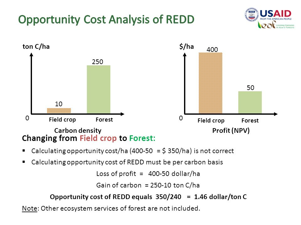 opportunity cost essays The concept of opportunity cost occupies an important place in economic theory the concept was first developed by wieser the opportunity cost of anything is the alternative that has been foregone.