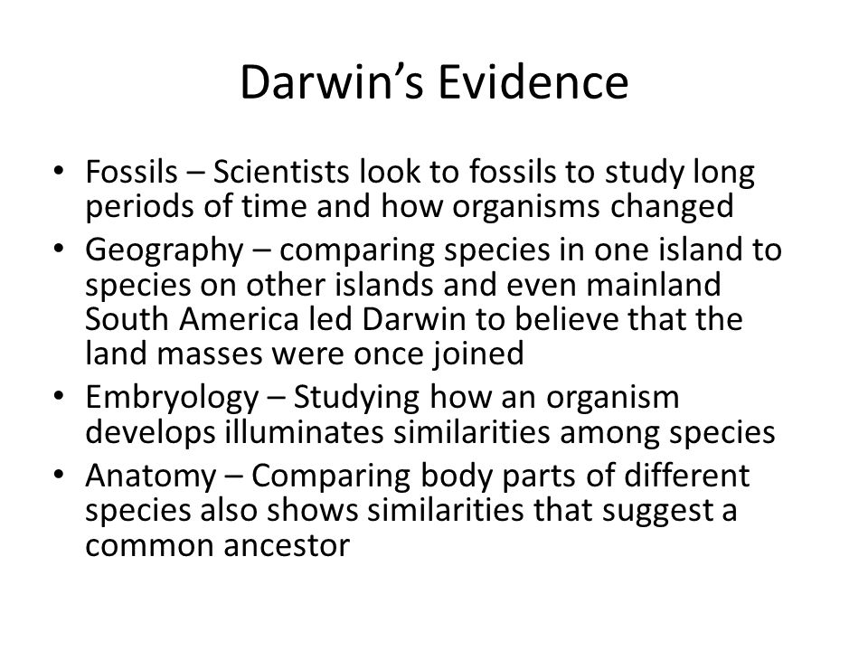 Darwin's Evidence Fossils – Scientists look to fossils to study long periods of time and how organisms changed.