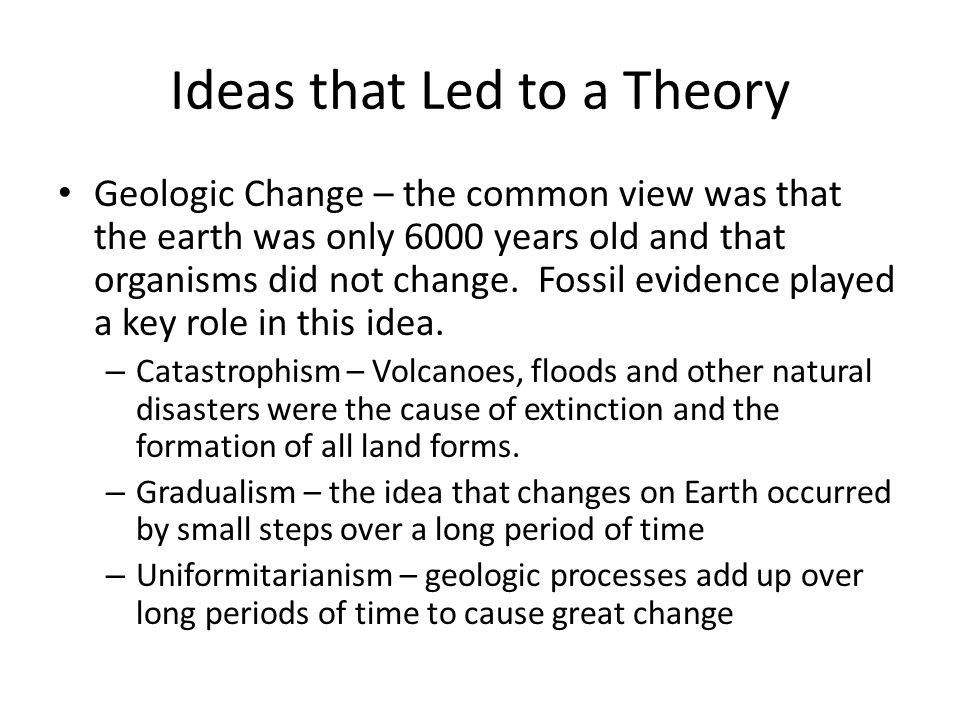 Ideas that Led to a Theory