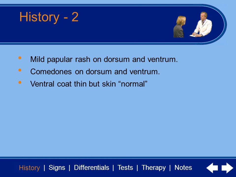History - 2 Mild papular rash on dorsum and ventrum.