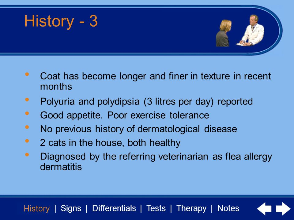 History - 3 Coat has become longer and finer in texture in recent months. Polyuria and polydipsia (3 litres per day) reported.