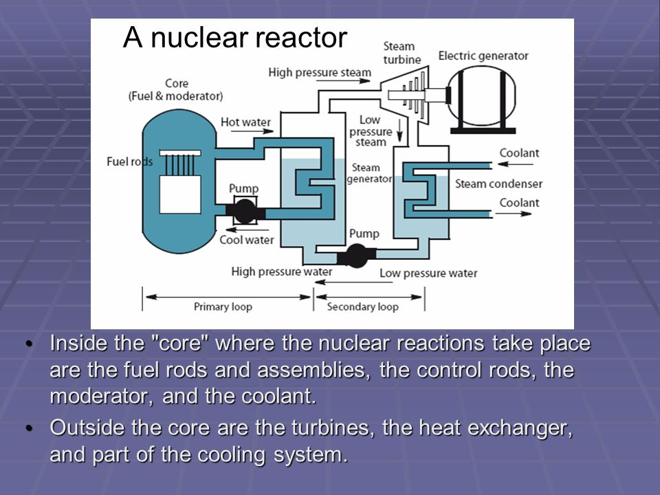 a nuclear reactor essay A nuclear reactor or nuclear power plant consists of nuclear reactor fuel, control rods, moderators, pressure vessels, coolant and containment.