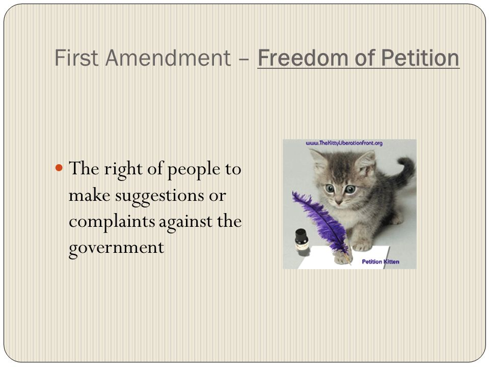 First Amendment – Freedom of Petition